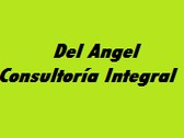 Del Angel Consultoría Integral